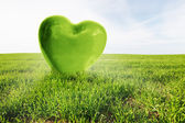 Green heart on the grassy field. Love, healthy environment, nature — Stock Photo