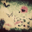 Vintage image of flowers and butterfly at spring summer time. — Stock Photo
