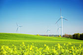 Wind turbines on spring field. Alternative, clean and natural energy — Stock Photo