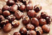Edible chestnuts — Stock Photo