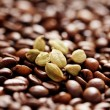 Coffee beans with cardamom - Stock Photo