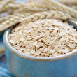 Bowl of oats - Stock Photo