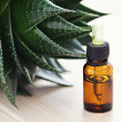Aloe vera essential oil — Stock fotografie