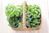 Basket of herbs — Stock Photo
