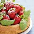 Basil cake with strawberries — Stock Photo