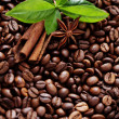 Coffee beans — Stock Photo #27509761