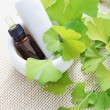 Ginkgo biloba essential oil — Stock Photo