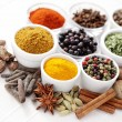 Lots of spices — Stock Photo