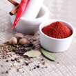 Tandoori masala — Stock Photo