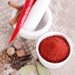 Tandoori masala — Stock Photo #41116303
