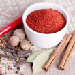 Tandoori masala — Stock Photo #41116625