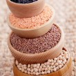 Different type of pulses — Stock Photo #41503355