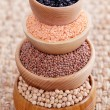 Different type of pulses — Stock Photo #41503361