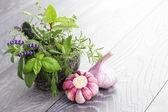 Herbs and garlic — Stock Photo