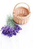 Basket of lavender — Stock fotografie
