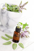 Essential oil and mint — Foto de Stock