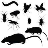 Pests set — Stock Vector