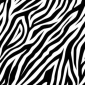 Zebra pattern as a background, vector — Stock Vector