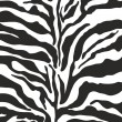 Zebra print background pattern — Stock Vector