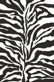 Zebra print background pattern — Stock Vector