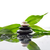 Green leaves over zen stones pyramid on waterdrops surface — Stock Photo
