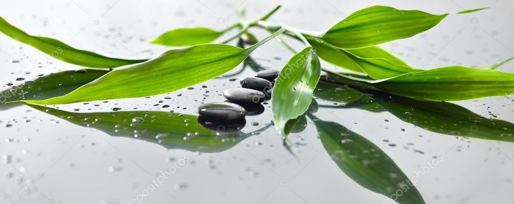 Spa still life with zen stone and bamboo for banner — Stock Photo #13140988