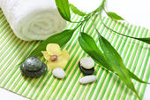 Spa treatment with stones, orchid flower and green bamboo — Stock Photo