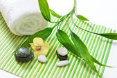 Spa treatment with towels and green bamboo — Stock Photo