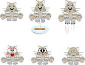 Funny cats. Vector illustration — Stock Vector