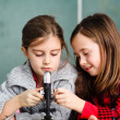 Royalty-Free Stock Photo: Two schoolgirls have a practice with microscope