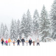 Family having fun in the snow — Stock Photo #20566435