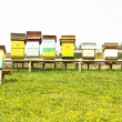 Rural wooden beehives on meadow — Stock Photo