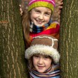 Two little sister girls hug playing in the forest — Stock Photo #40039291