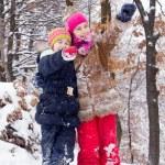 Two little girls having fun in winter — Stock Photo #40040267