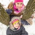 Two little girls having fun in winter — Stock Photo #40040421