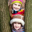 Two little sister girls hug playing in the forest — Stock Photo #40179257