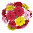 Top view bouquet of yellow red and pink flowers isolated on white background — Stock Photo #19154141