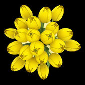 Top view bouquet of yellow tulips in vase isolated on black back — Stock Photo