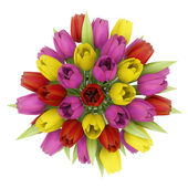 Top view bouquet of tulips in vase isolated on white background — Stock Photo