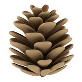 Pine cone isolated on white background — 图库照片