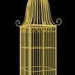 Empty golden birdcage isolated on black background — Stock Photo #43264141