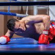 Stock Photo: Boxer lying knocked out in a boxing ring