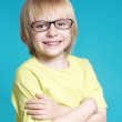 Portrait of the nice boy in glasses — Stock Photo #13276439