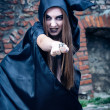 Portrait of a young witch. Halloween, horror. — Stock Photo #13276467