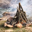 Stock Photo: Closeup shot of camping fire
