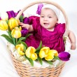 Portrait newborn baby in basket — Stock Photo #13276703