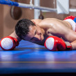 Boxer lying knocked out in a boxing ring - Zdjęcie stockowe