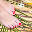Stock Photo: Beautiful feet leg with perfect spa pedicure on bamboo