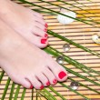 Stock Photo: Beautiful feet leg with perfect sppedicure on bamboo