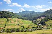 Landschap van de zomer in de bergen en de blauwe hemel met wolken — Stockfoto